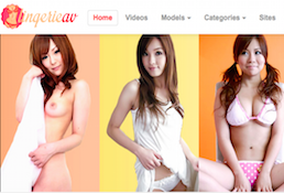 Nice pay adult site if you want awesome Asian material
